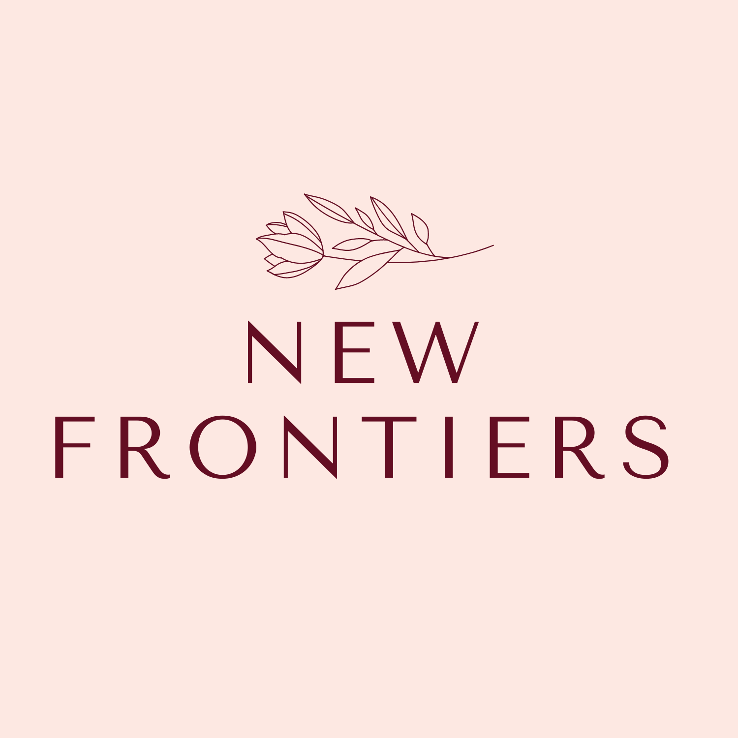 New Frontiers Managed IT